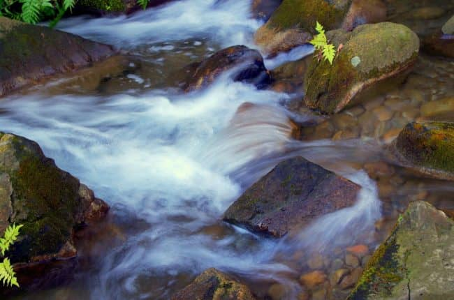 Jesus Is The Living Water
